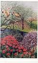 פרחים אדומים וסגולים
